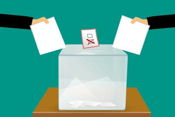 D. Rousseau – La démocratie continue : fondements constitutionnels et institutions d'une action continuelle des citoyens
